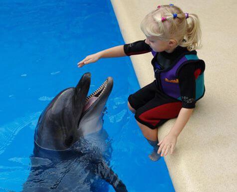 дцп дельфинотерапия