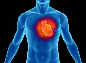 рак сердца фото