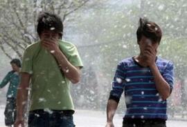 аллергия на пух фото