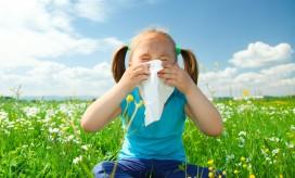 причины аллергии фото